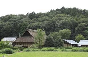 相続したが使う予定のない田舎の土地・家屋・山林のイメージ
